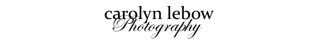 Carolyn Lebow Photography Blog logo